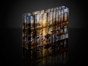 acryl-leinwand-dekoration-einrichtung-wald-sonnenuntergang-natur-modern