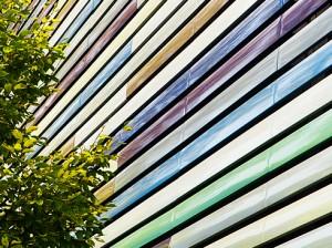 baum-natur-gebäude-architektur-gegensatz-bunte-dielen-objektfotografie